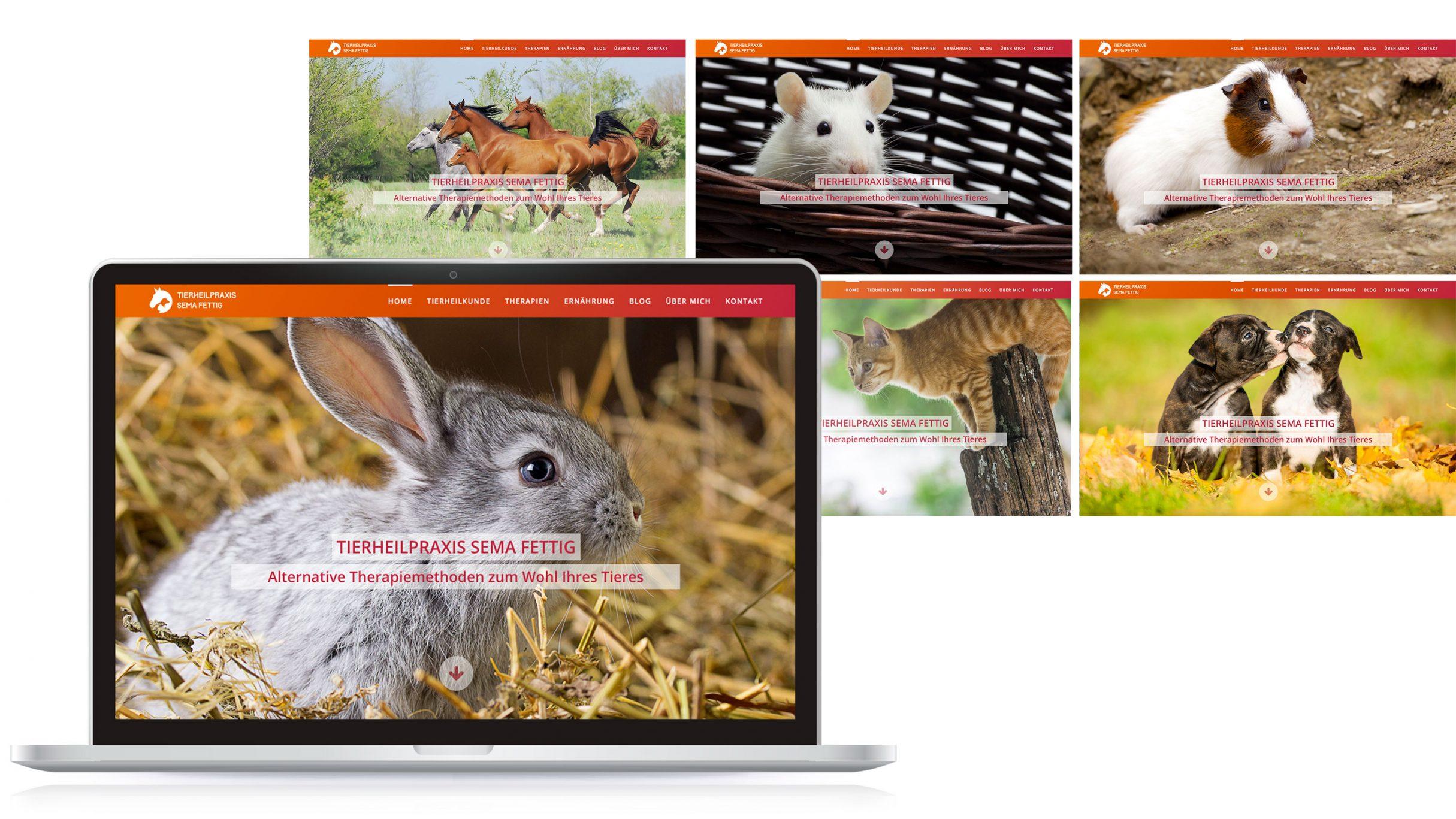 Webdesign, Startseite für Tierheilpraxis Sema Fettig: DIE NEUDENKER® Agentur, Darmstadt