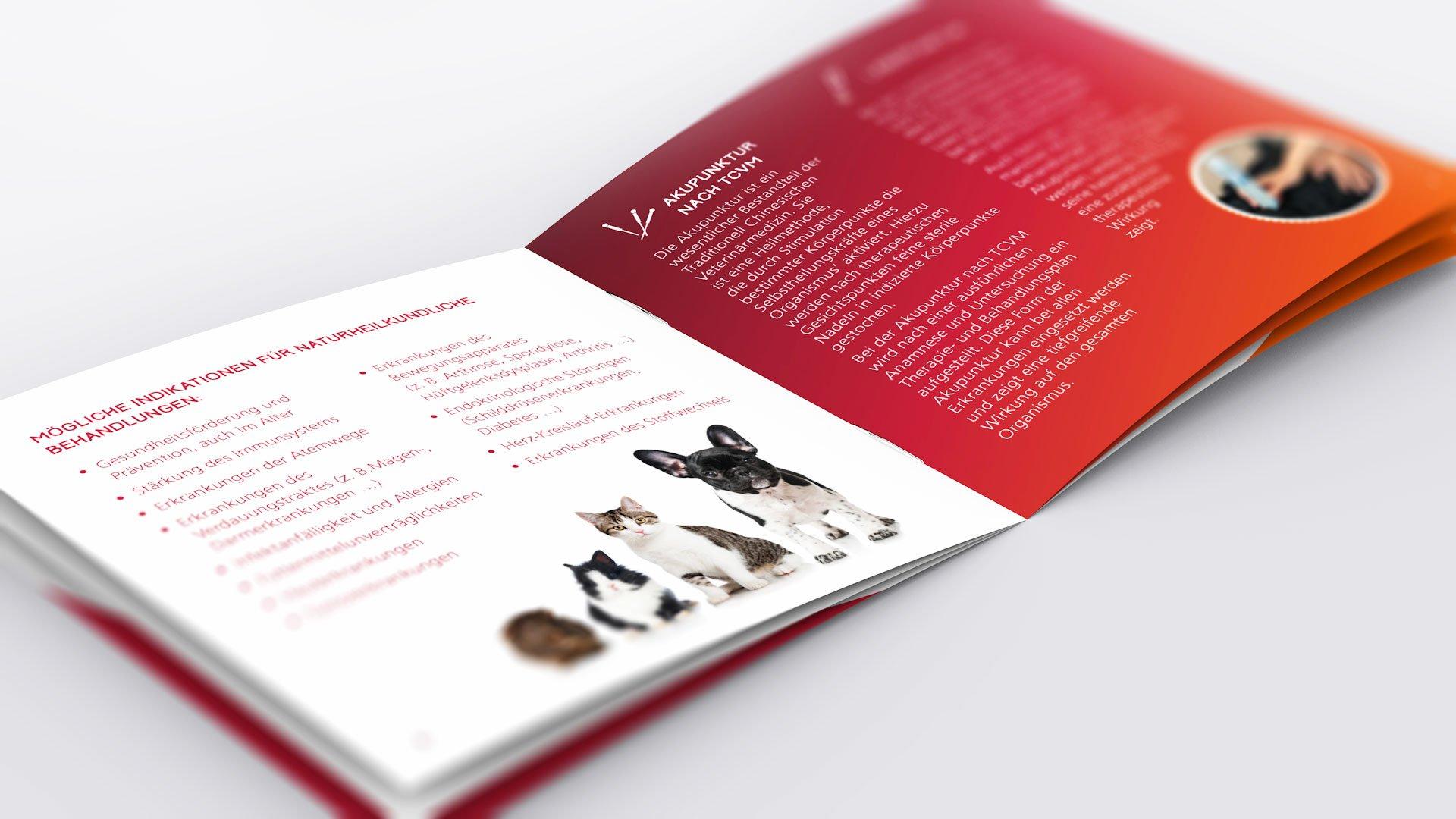 Corporate Design, Broschüre für Tierheilpraxis Sema Fettig: DIE NEUDENKER® Agentur, Darmstadt