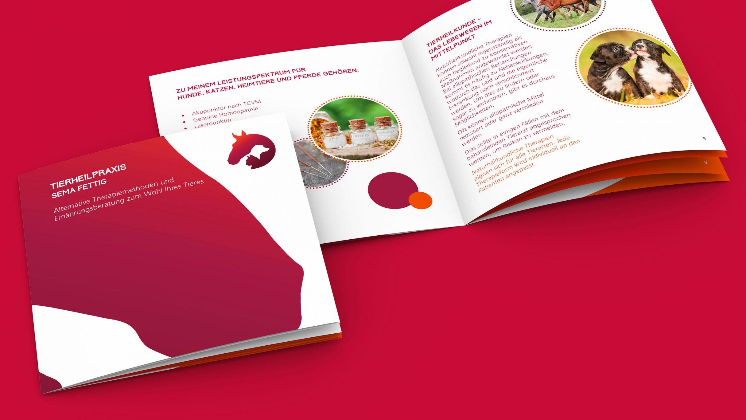 Broschüre für Tierheilpraxis Sema Fettig: DIE NEUDENKER® Agentur, Darmstadt